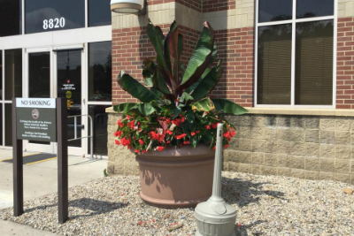 Image of flower pot at front of building