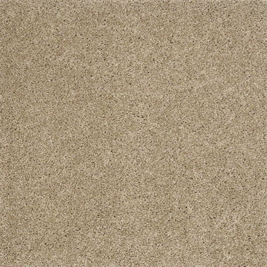 STANDARD GO SOFTLY RIVER BANK CARPET