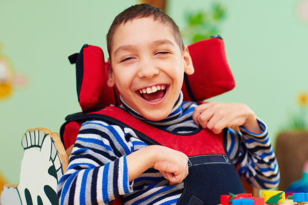 Services Disability Legal Services of Indiana