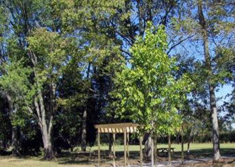 Windisch Park