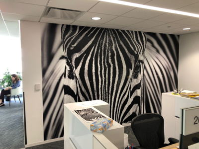 Non-Traditional Office Wall Graphic Zebra