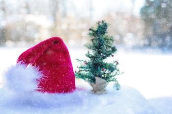 Santa at Greenwood Park Mall