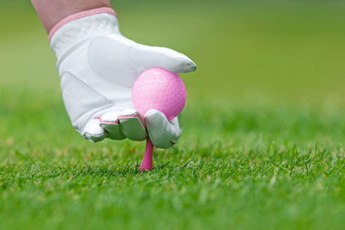 Image for Give Back Gals Golf Outing at Hickory Stick
