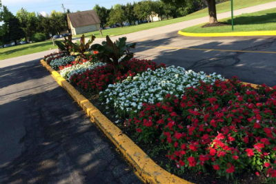Image of flower bed