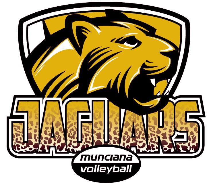 Logo for Jaguars