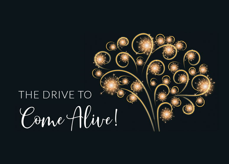 Image for Drive to Come Alive