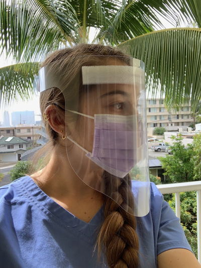 Plastic Face Shield Example