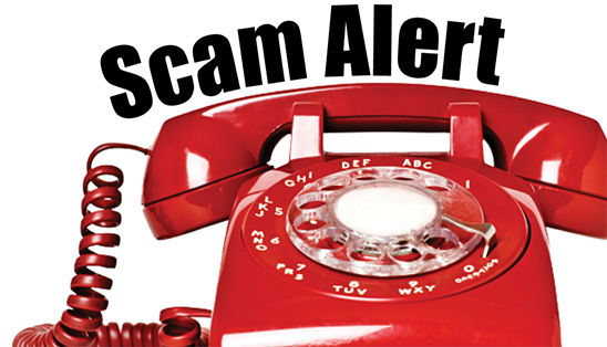 Image for Avoiding Telephone and Internet Scams