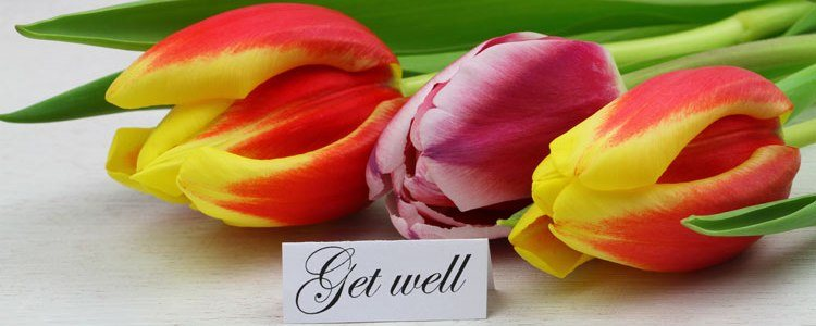Three tulips with Get Well note