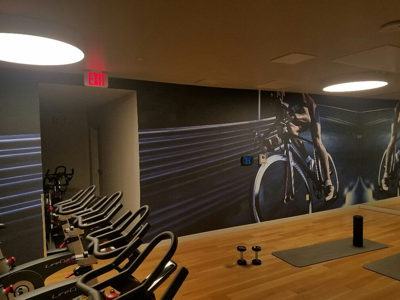 Fitness Room Wall Mural