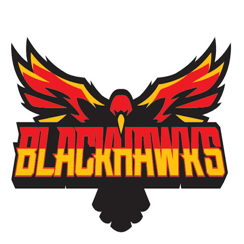 Logo for Blackhawks