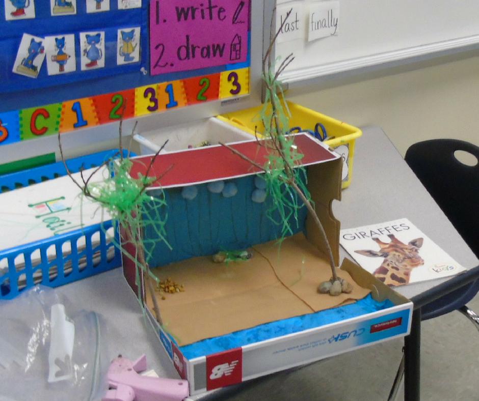 Cardboard animal habitat