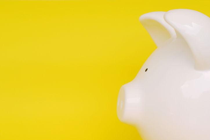 White Piggy Yellow Background