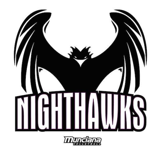 Logo for Nighthawks