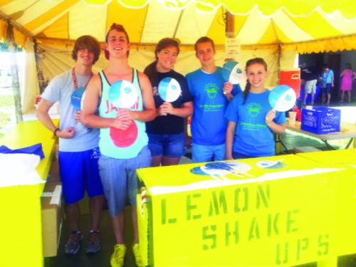 volunteering at the fair