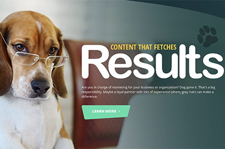 Image for Clever Dogs Media Launches New Website
