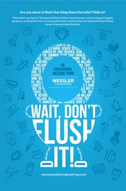 educational poster don't flush it