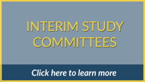 Interim Study Committees