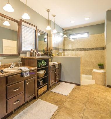 Vanity & Serenity Shower