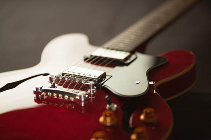 Frank's Guitars