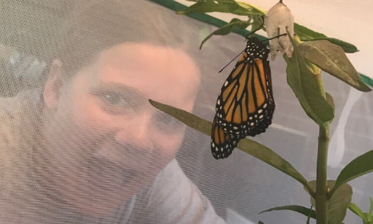 Students study to save butterflies