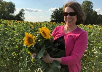 U-pick Sunflowers