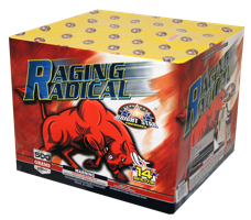 Image for Raging Radical 14 Shots