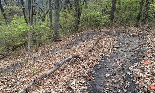 A mountain bike trail at Prairie Creek Reservoir